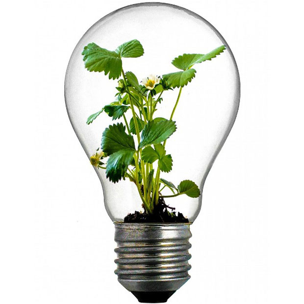 Innovation cci ni vre for Idee innovation entreprise